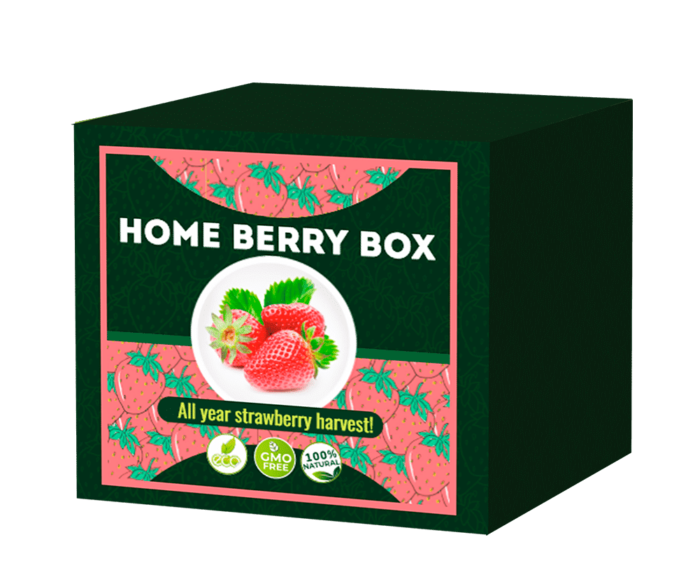 Home Berry Box What is it? Side Effects